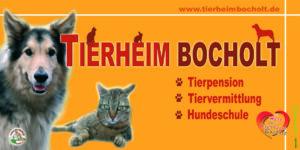 AaWerbung.de, Bocholt, Werbung, Werbetechnik, Referenz Schilder